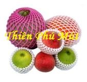 Mút xốp bọc trái cây